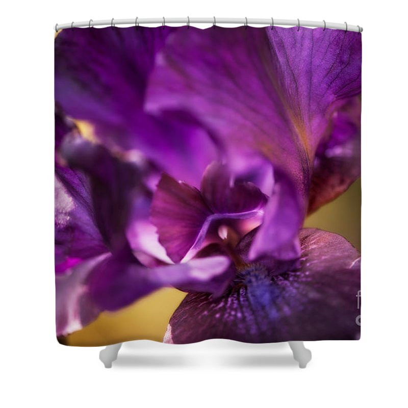 Botanical Shower Curtain featuring the photograph Getting Personal by Venetta Archer