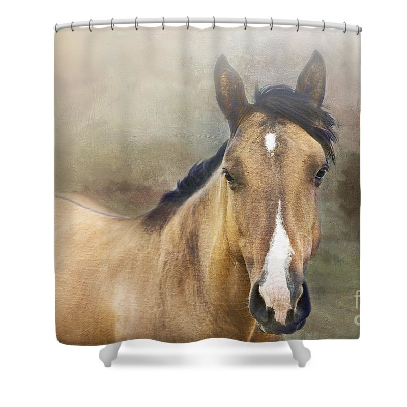 Horse Shower Curtain featuring the photograph Golden by Betty LaRue