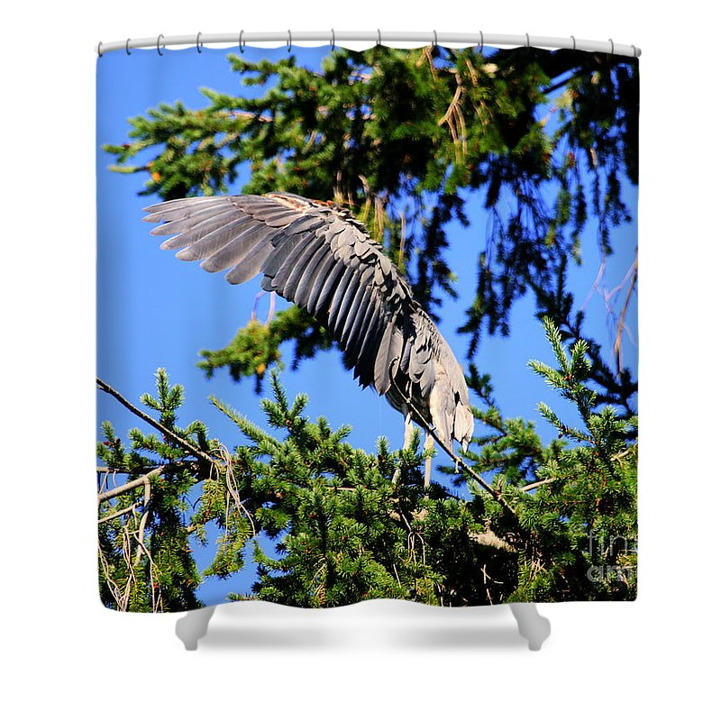 Blue Heron Bird Shower Curtain featuring the photograph Great Blue Heron Cover Up by Tap On Photo