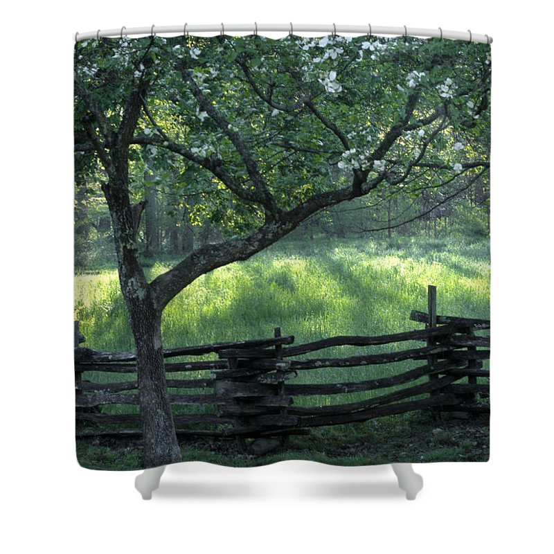 Great Smoky Mountains Shower Curtain featuring the photograph Great Smoky Mountain Sunrise by Sandra Bronstein