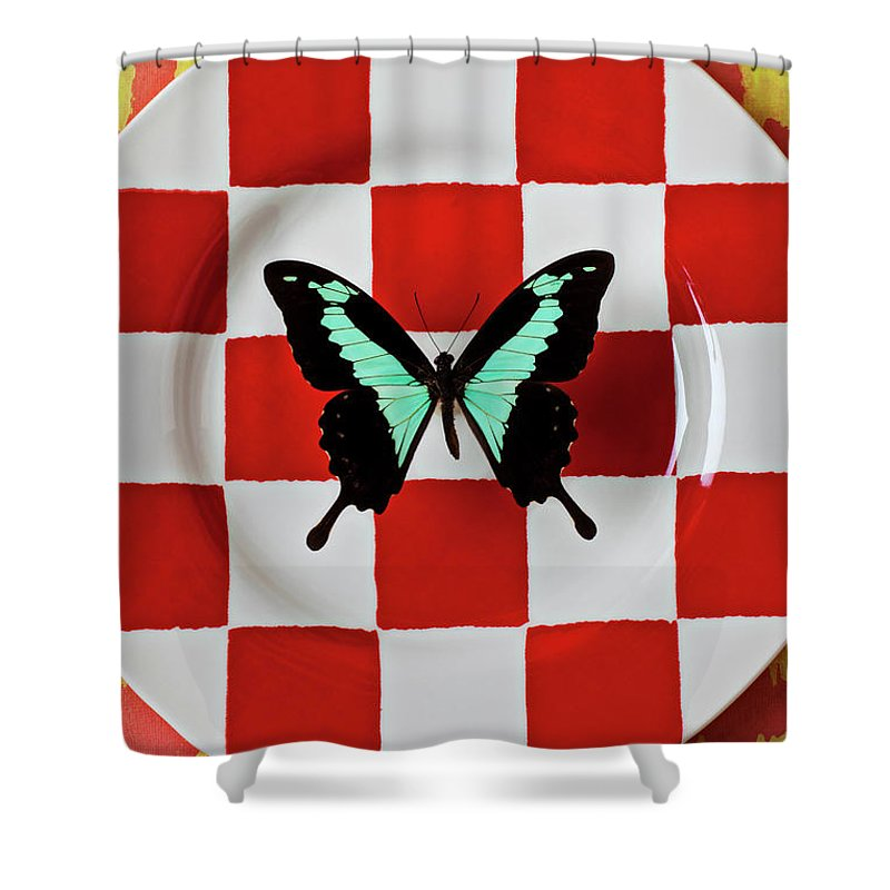 Butterfly Shower Curtain featuring the photograph Green And Black Butterfly On Red Checker Plate by Garry Gay