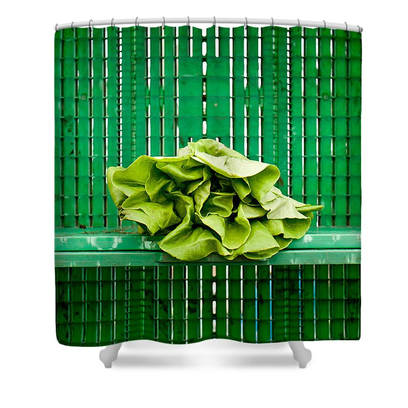 Lettuce Shower Curtain featuring the photograph Green Greens by Lauri Novak