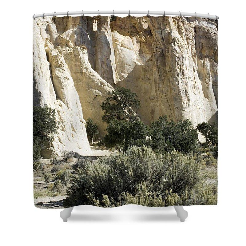 Bronstein Shower Curtain featuring the photograph Grosvenor by Sandra Bronstein