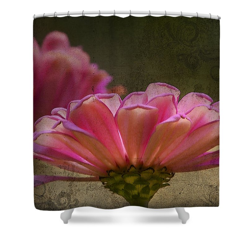 Zinnia Shower Curtain featuring the photograph Grungey Pink Zinnia Delight by Kathy Clark
