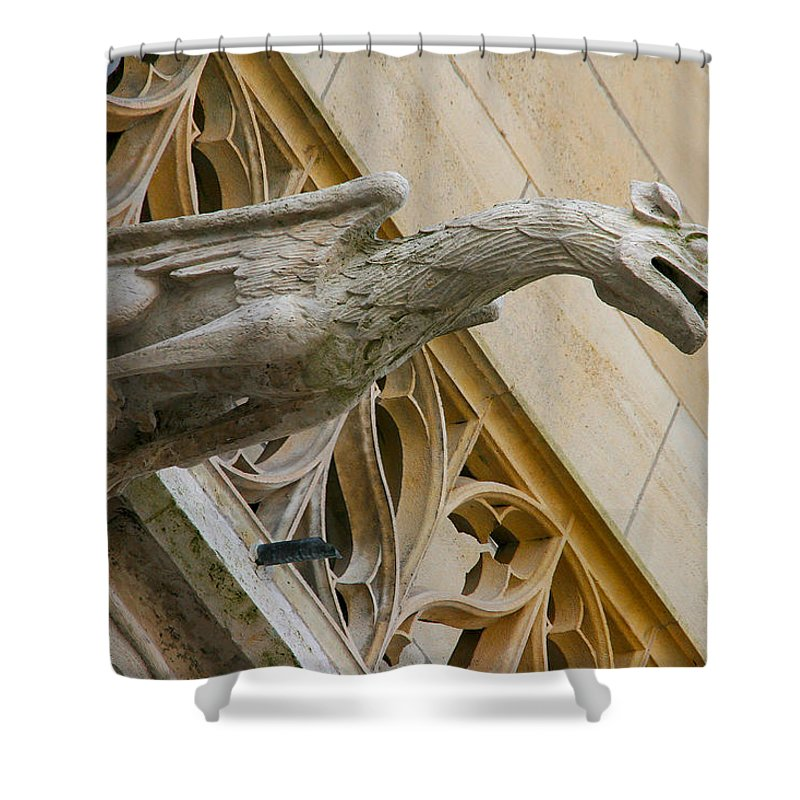 Dragon Shower Curtain featuring the photograph Guardian Dragon by Diana Haronis