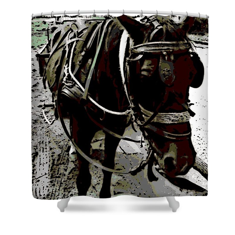 Gypsy Shower Curtain featuring the photograph Gypsy by George Pedro