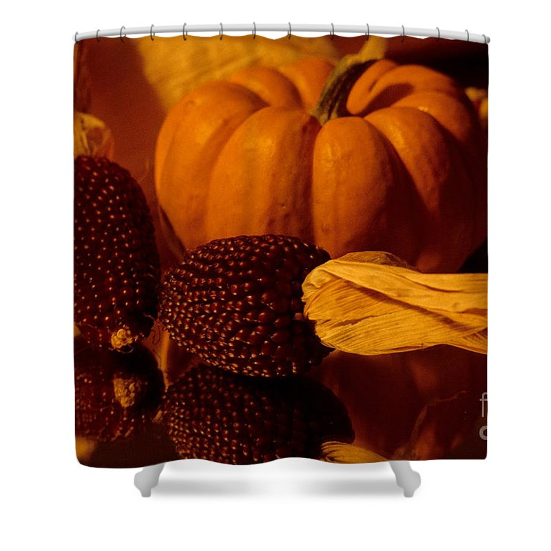Pumpkins Shower Curtain featuring the photograph Harvest Reflections by Sharon Elliott