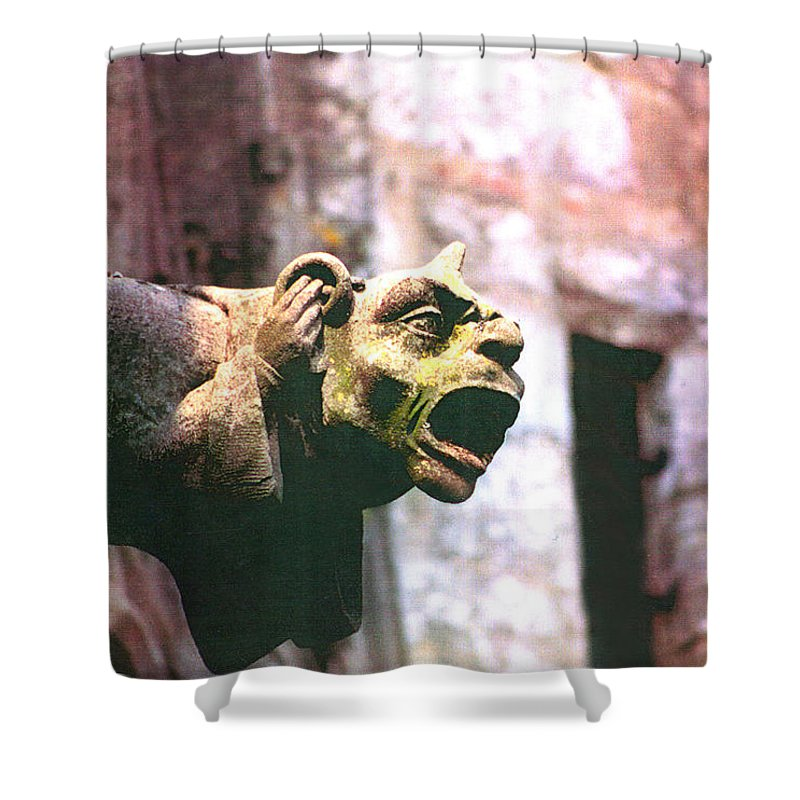 Gargoyle Shower Curtain featuring the photograph Hear No Evil by Diana Haronis