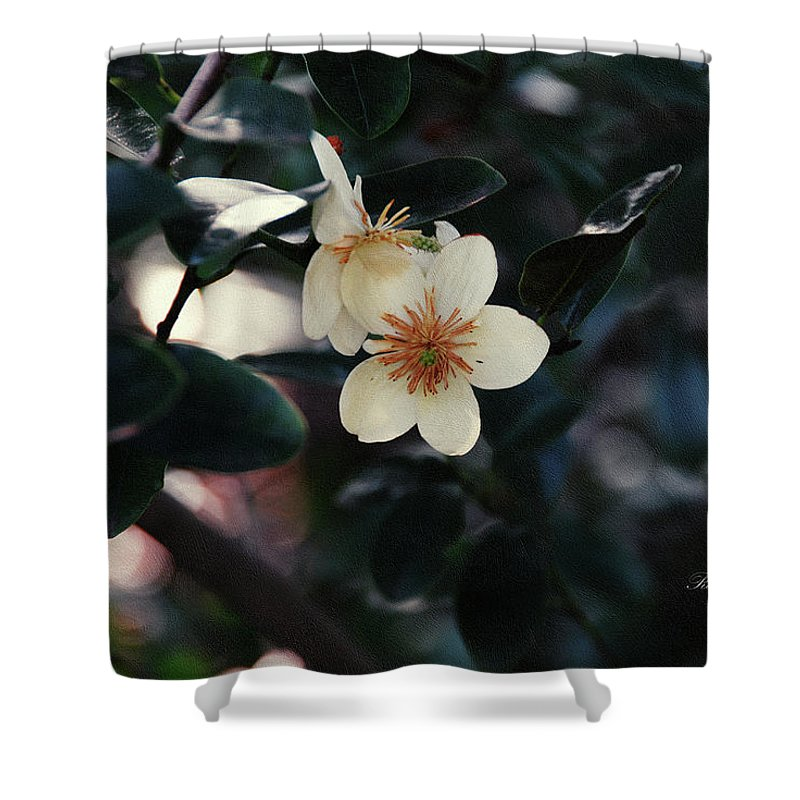 Flower Shower Curtain featuring the photograph Hello Spring by Georgiana Romanovna