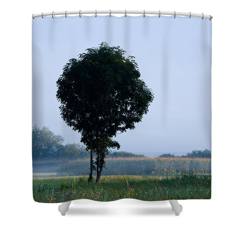 Barje Shower Curtain featuring the photograph Here Comes The Sun by Ian Middleton
