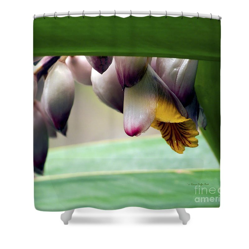 Plant Photography Shower Curtain featuring the photograph Hiding by Patricia Griffin Brett