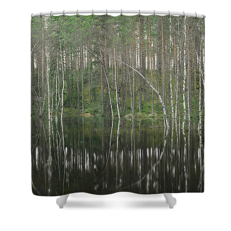 Scenic Views Shower Curtain featuring the photograph High Waters In A Forest Of Evergreens by Mattias Klum