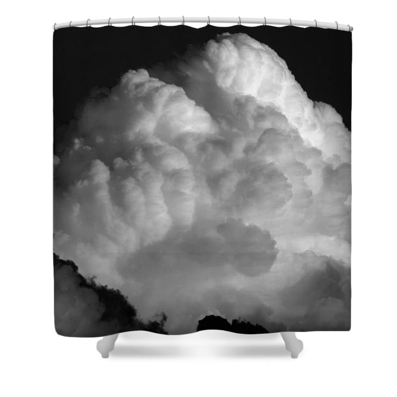 Hit Man Shower Curtain featuring the photograph Hit Man by Edward Smith