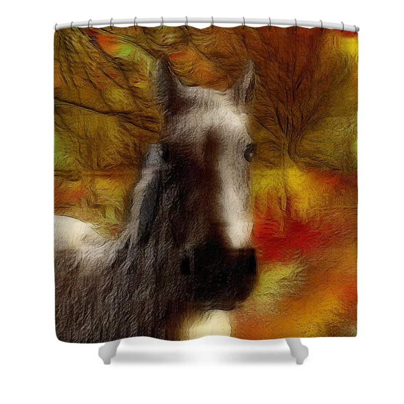 Horse Shower Curtain featuring the photograph Horse On The Farm by Ericamaxine Price
