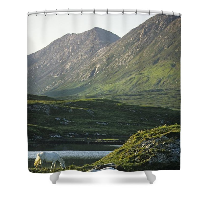 Animal Themes Shower Curtain featuring the photograph Horses Grazing On A Landscape, County by The Irish Image Collection
