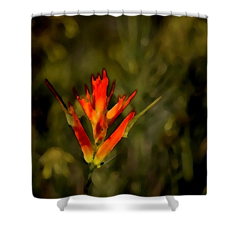Photo Art Shower Curtain featuring the photograph Indian Paintbrush by Vicki Pelham