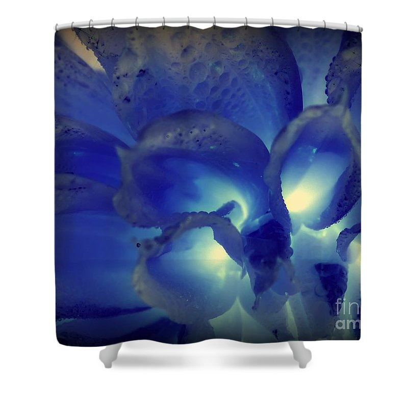 Dahlia Shower Curtain featuring the photograph Indigo Dew II by Beth Phifer