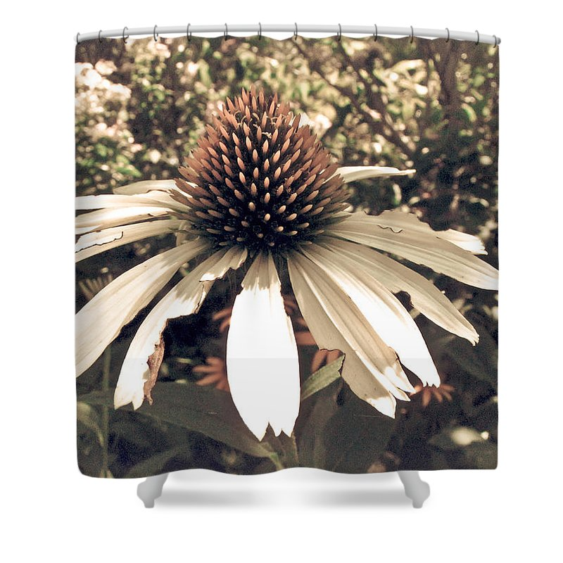 Flower Shower Curtain featuring the photograph Innocence by Jessica Brawley