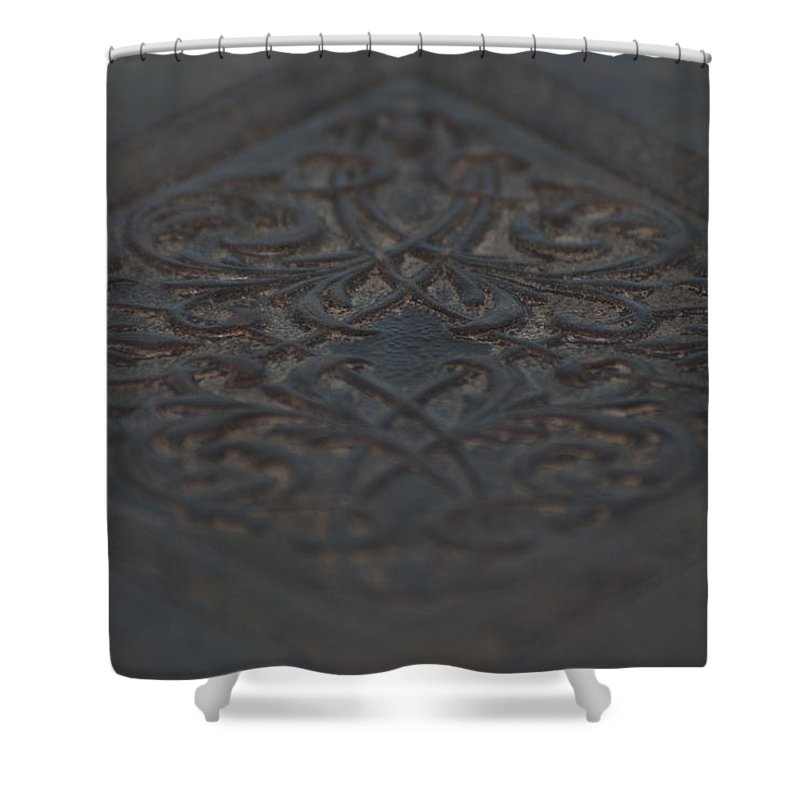 Intricacies Shower Curtain featuring the painting Intricacies by Christopher Gaston