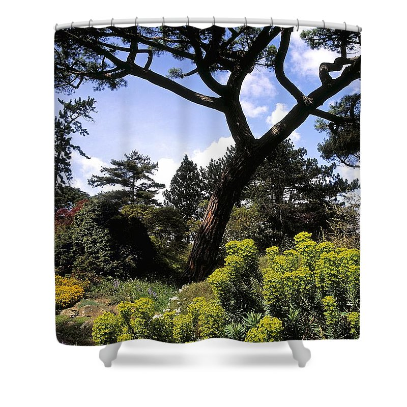 Blue Sky Shower Curtain featuring the photograph Irish National Botanic Gardens, Dublin by The Irish Image Collection