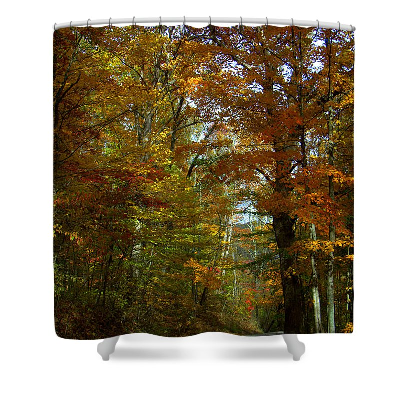 Jackson Creek Road Shower Curtain featuring the photograph Jackson Creek Road by Ed Smith