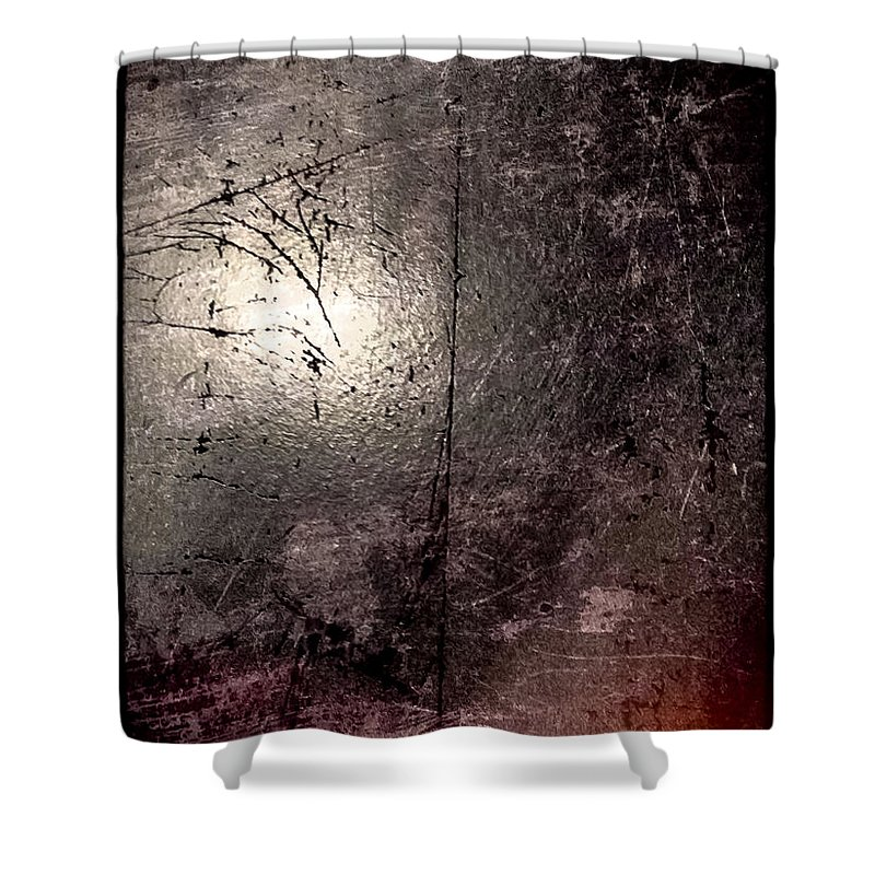 Metal Shower Curtain featuring the photograph Japo by Michele Mule