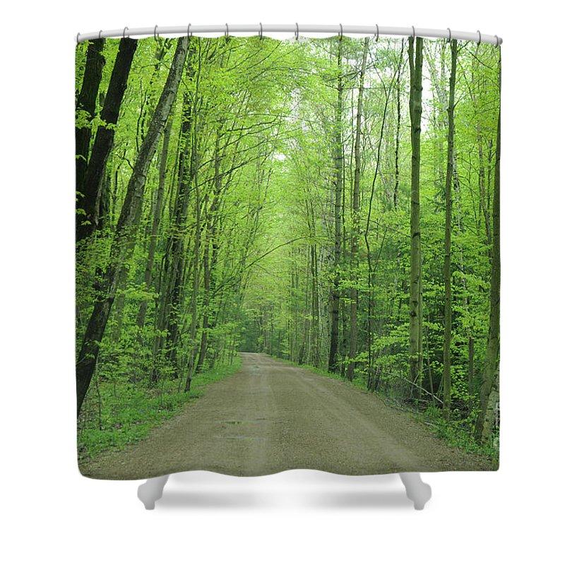 Green Shower Curtain featuring the photograph Jasper Woods by Ronald Grogan