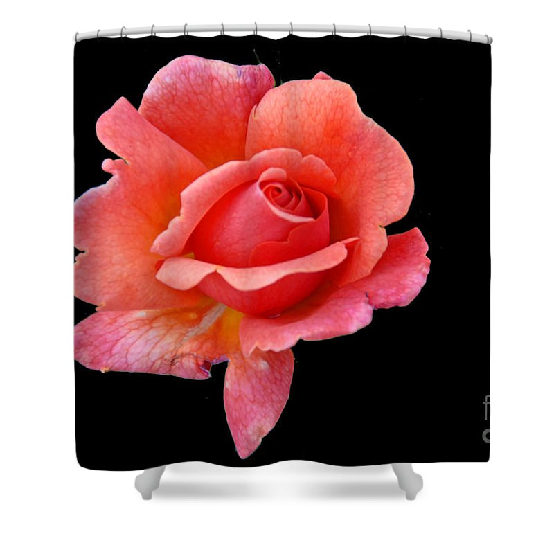 Flora Shower Curtain featuring the photograph Just Peachy by Cindy Manero