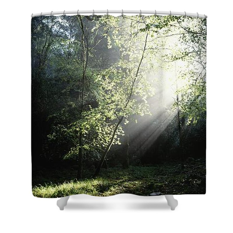 Co Kerry Shower Curtain featuring the photograph Killarney National Park, Co Kerry by The Irish Image Collection