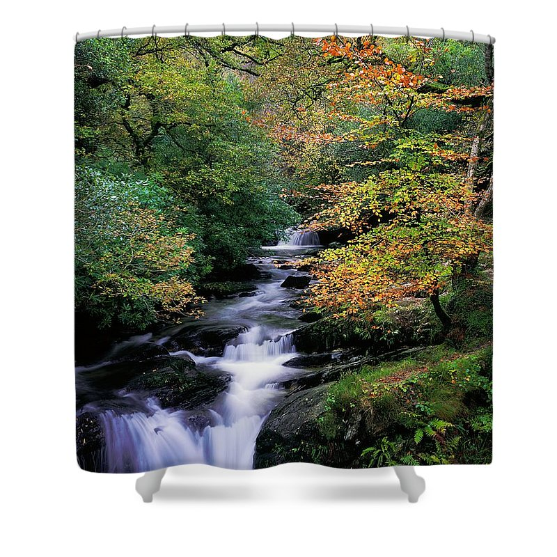 Autumn Leaves Shower Curtain featuring the photograph Killarney National Park, Ring Of Kerry by The Irish Image Collection