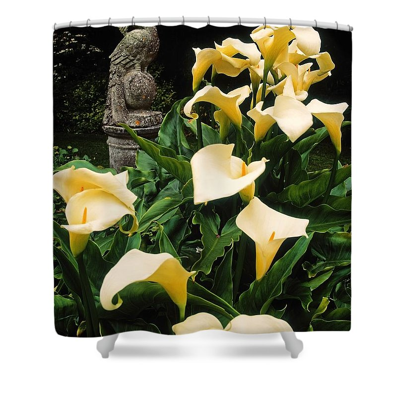 Art Shower Curtain featuring the photograph Kilmokea Country House And Gardens, Co by The Irish Image Collection