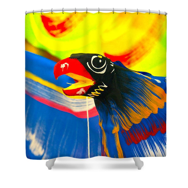 Kite Shower Curtain featuring the photograph Kite by Charuhas Images