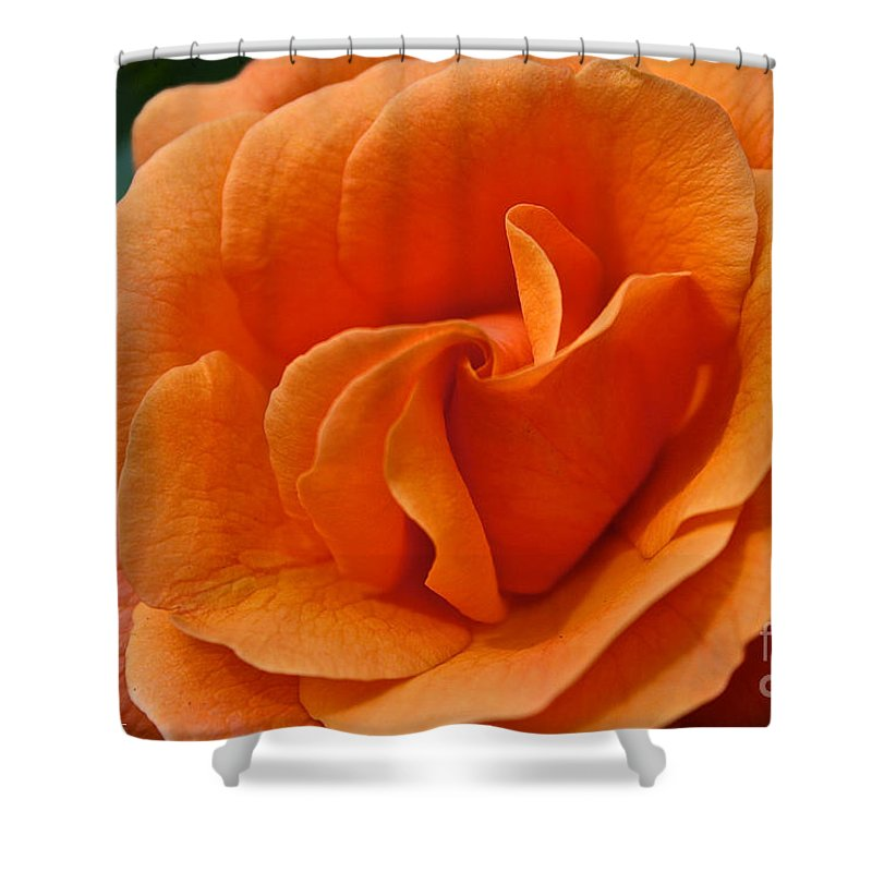 Plant Shower Curtain featuring the photograph Known As Easy Does It by Susan Herber