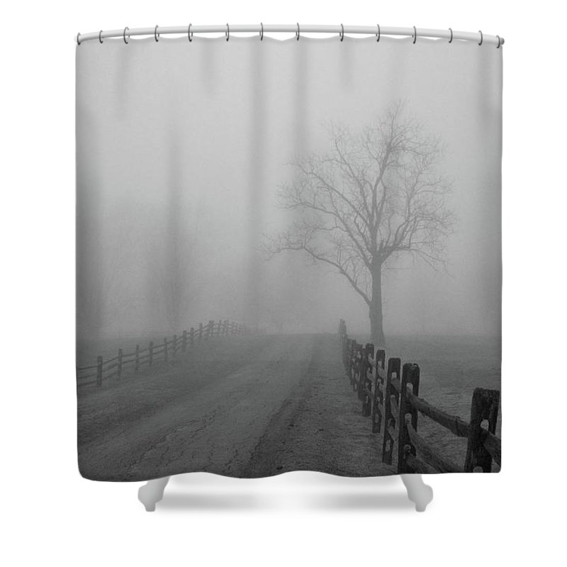 Tree Shower Curtain featuring the photograph Knox Farm 9734 by Guy Whiteley