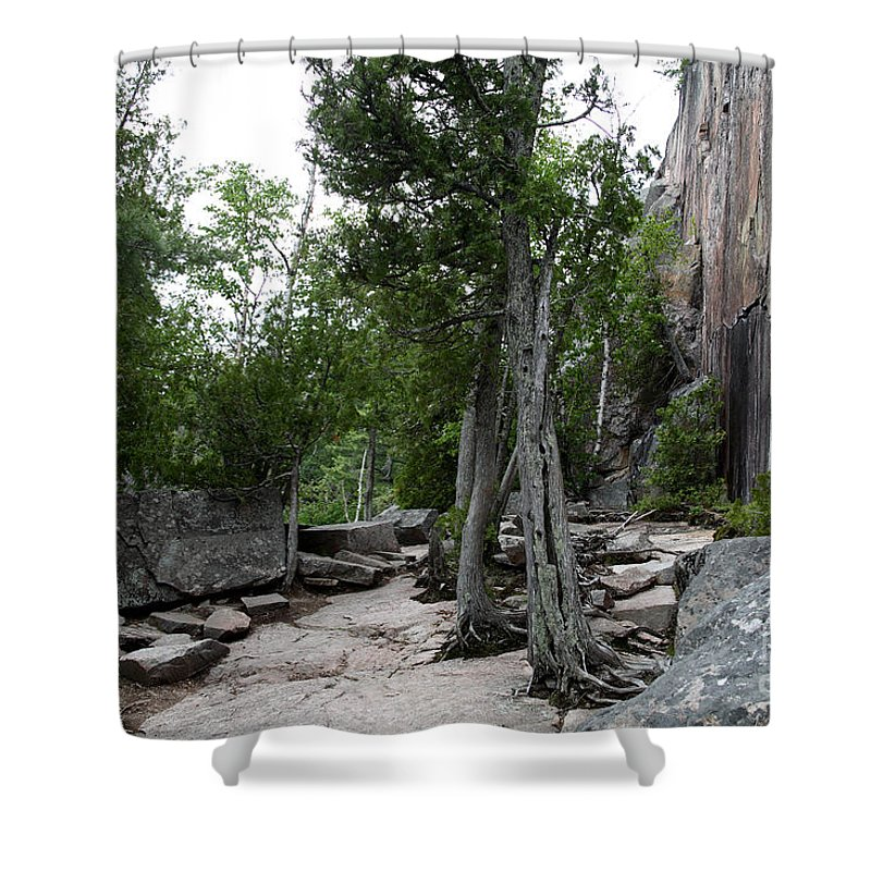 National Park Shower Curtain featuring the photograph Lake Superior Provincial Park by Ted Kinsman