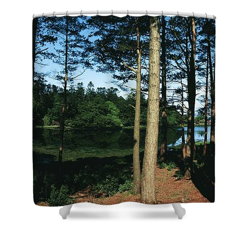 Co Kerry Shower Curtain featuring the photograph Lauragh, Co Kerry, Ireland Trees In A by The Irish Image Collection
