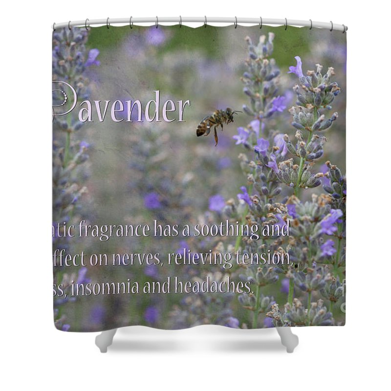 Lavender Shower Curtain featuring the photograph Lavender by Carole Lloyd