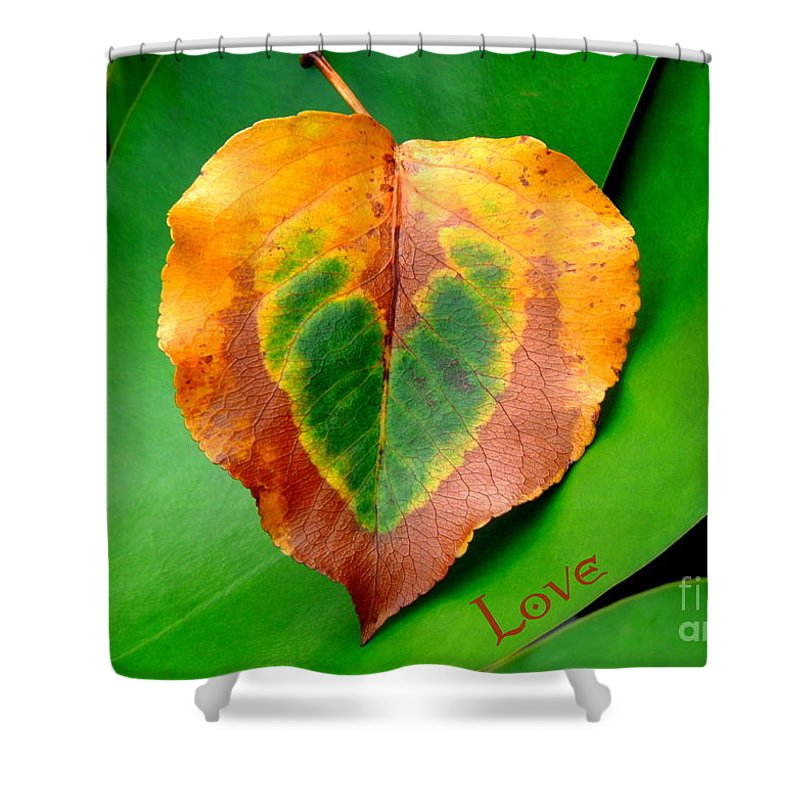 Leaf Shower Curtain featuring the photograph Leaf Leaf Heart Love by Renee Trenholm