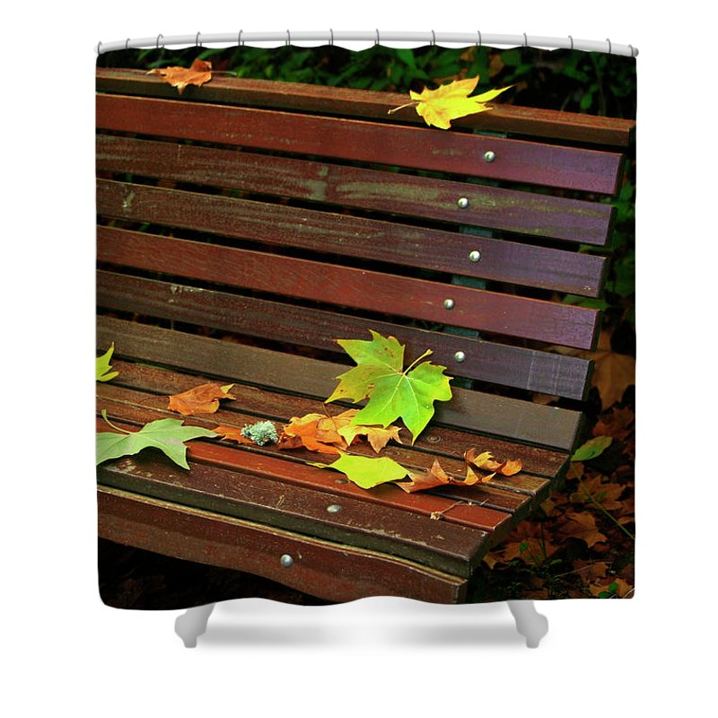 Autumn Shower Curtain featuring the photograph Leafs In Bench by Carlos Caetano