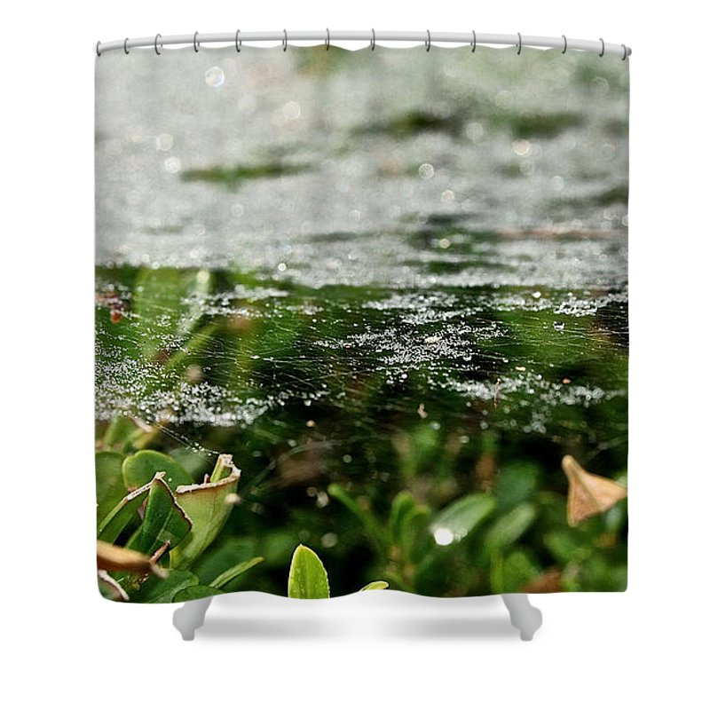 Outdoors Shower Curtain featuring the photograph Level by Susan Herber
