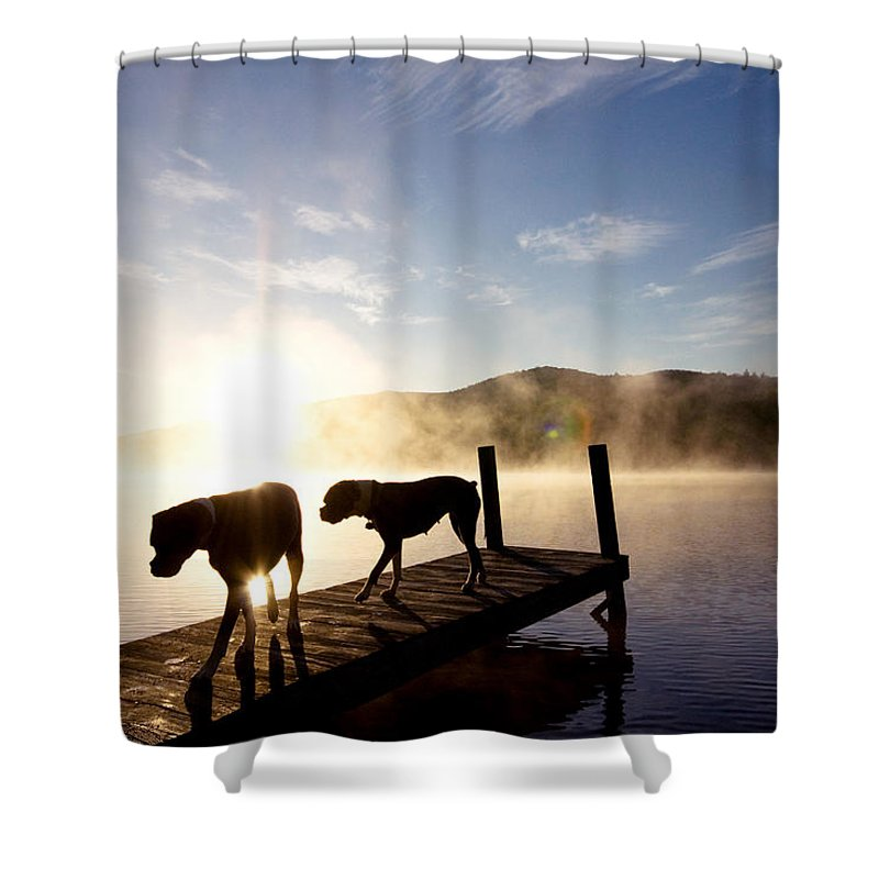 Shower Curtain featuring the photograph Light Of My Life Boxer Dogs On Dock by Stephanie McDowell