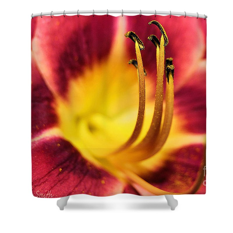 Flower Shower Curtain featuring the photograph Lilly For A Day by Susan Smith