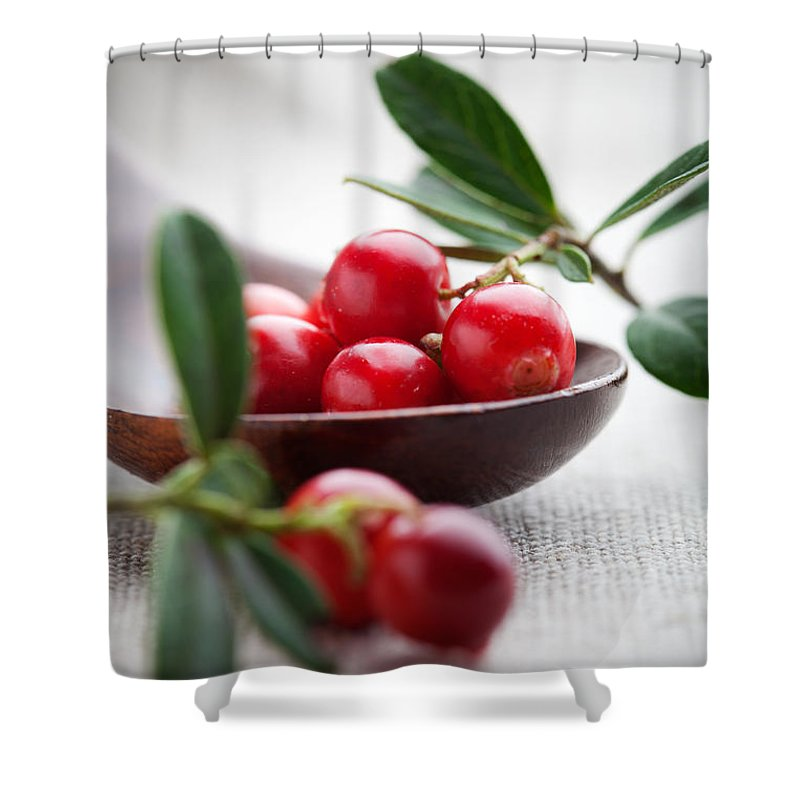 Autumn Shower Curtain featuring the photograph Lingonberries by Kati Finell