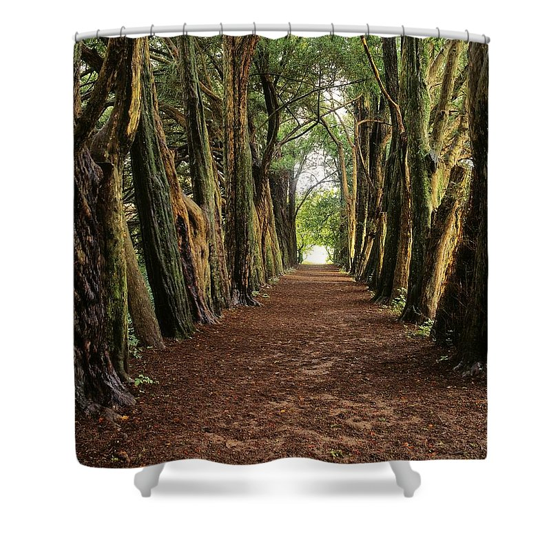 County Waterford Shower Curtain featuring the photograph Lismore, County Waterford, Ireland by The Irish Image Collection