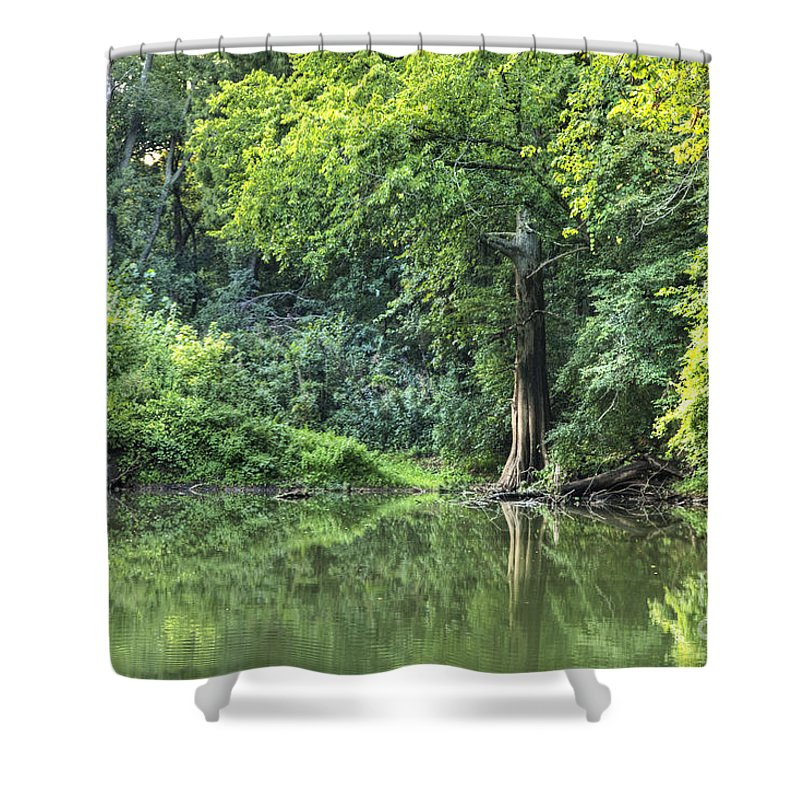 2012 Shower Curtain featuring the photograph Lone Cypress by Larry Braun