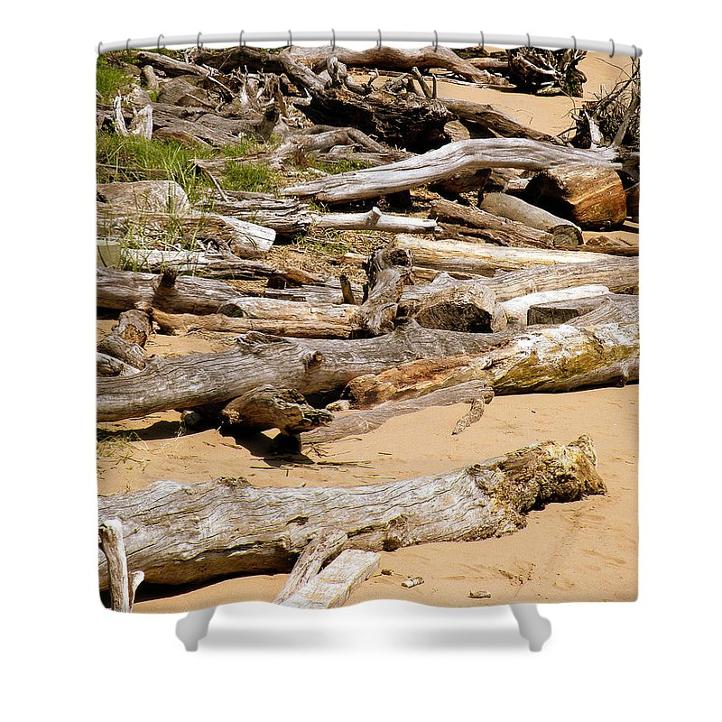 Driftwood Shower Curtain featuring the photograph Lonely Driftwood by Trish Tritz