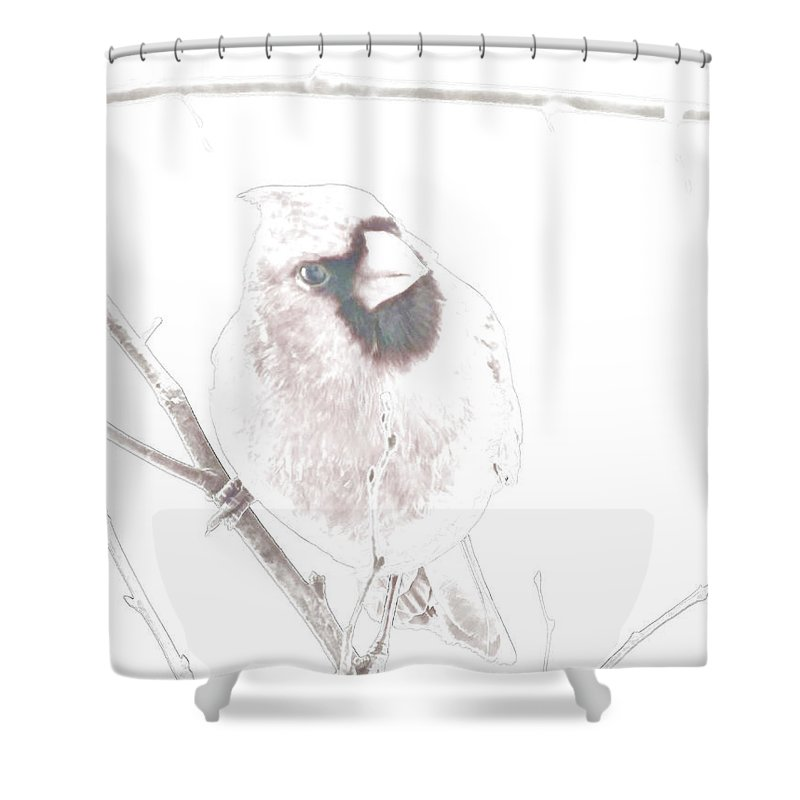 Nature Shower Curtain featuring the digital art Looking In The Windwo At Me II by Debbie Portwood