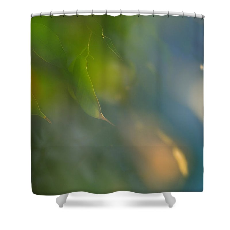 Flora Shower Curtain featuring the photograph Luminosas by Guido Montanes Castillo