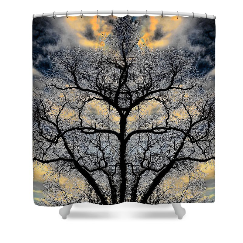 Hakon Shower Curtain featuring the photograph Magical Tree by Hakon Soreide