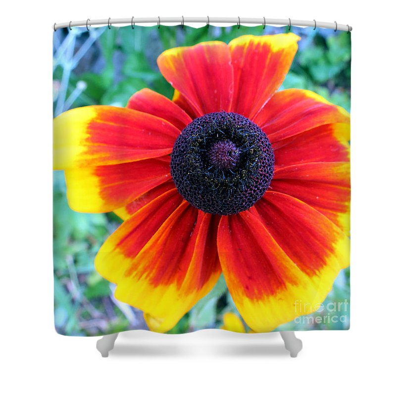 Bright Shower Curtain featuring the photograph Magnificent by Art Dingo